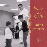 Earth Day All Ages Aikido 2 0 Tai Sai Seminar+image